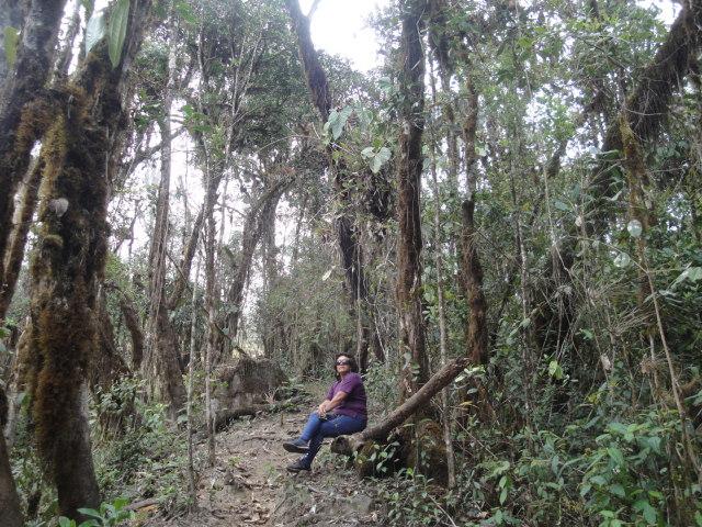 tours a selva vergel