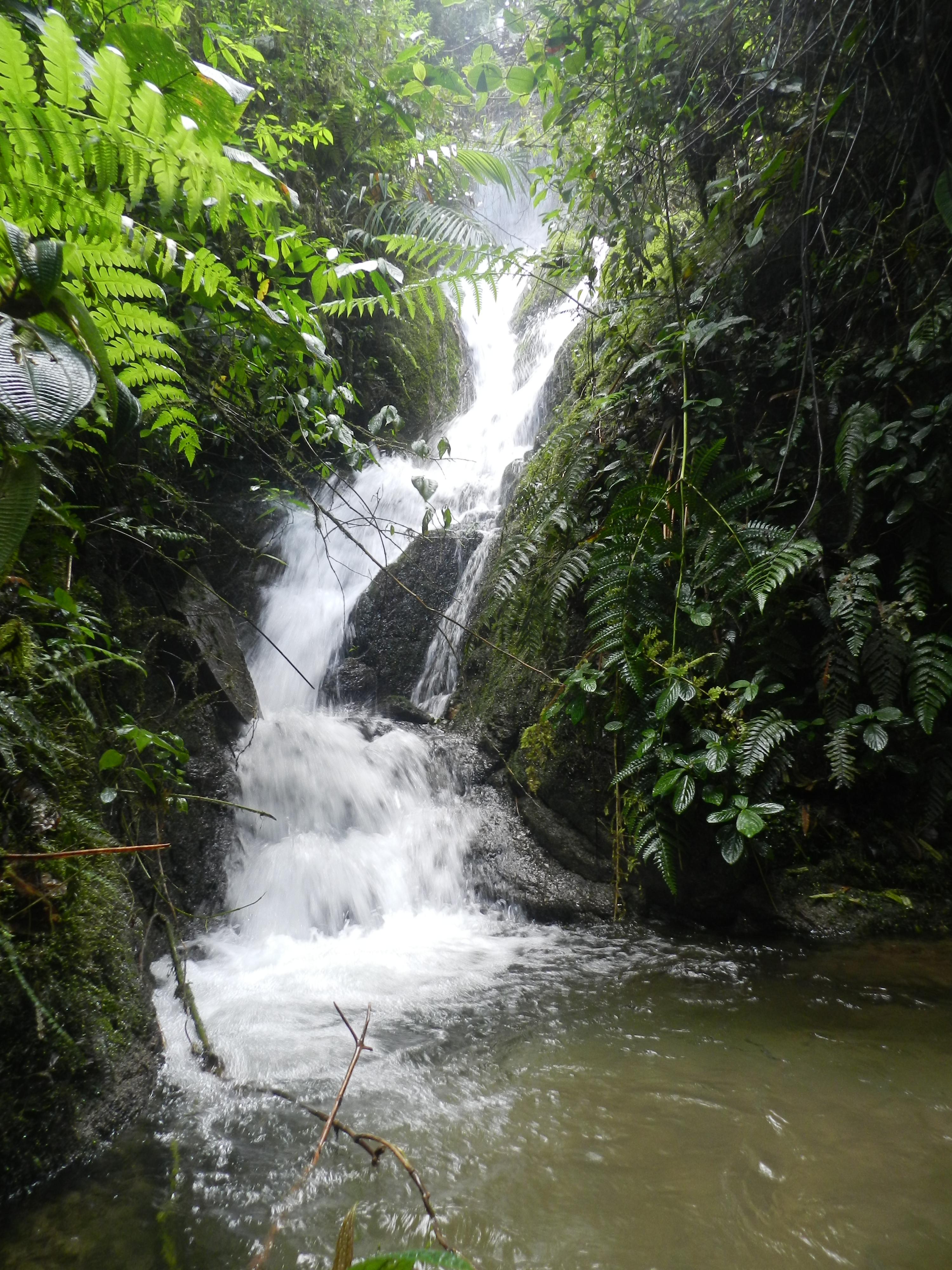 ecoturismo en cuenca ecuador