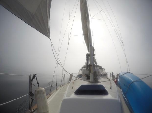 Fog Sail