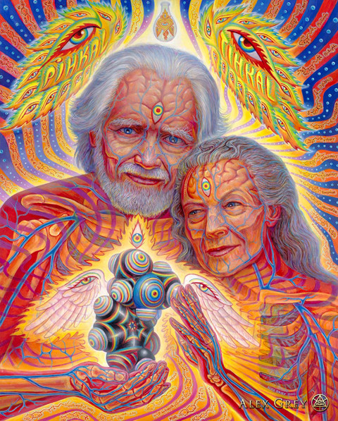 "Goodbye to the Godfather of Psychedelics: Shulgin Now ""Tripping in the Cosmos"""