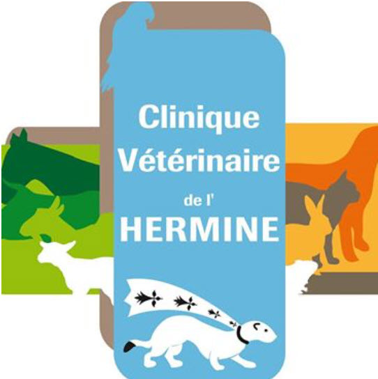 Logo CV Hermine (2).jpg
