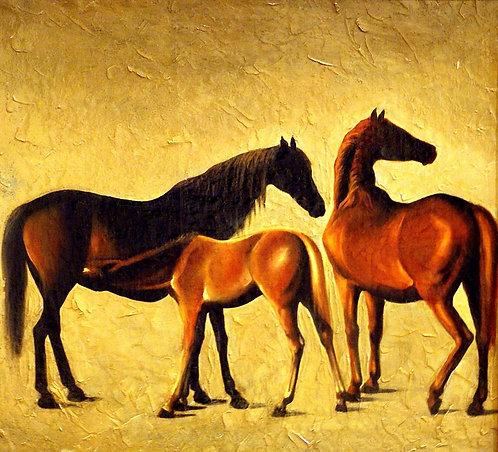 Лошади с жеребенком