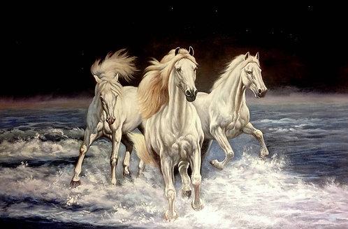 Ночные кони