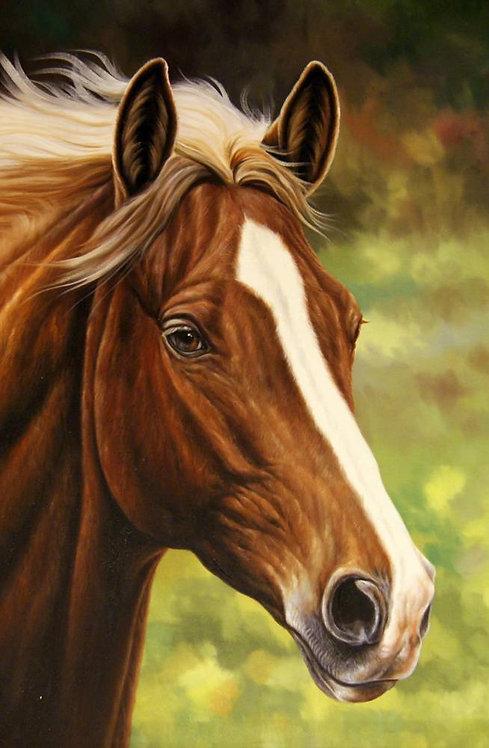 Конь с проточиной