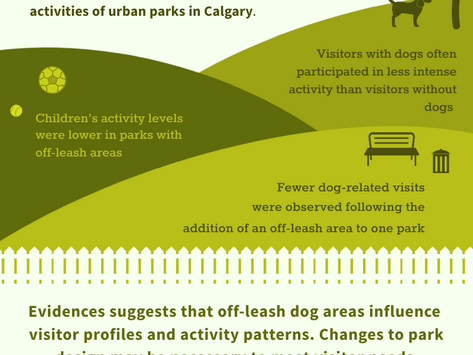Impact of Off-Leash Parks on Visitor Activities