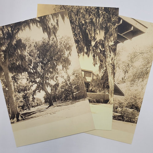 Lake Jackson 1940s Historic Postcard Set of 10