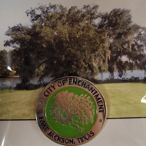 Lake Jackson City of Enchantment pin
