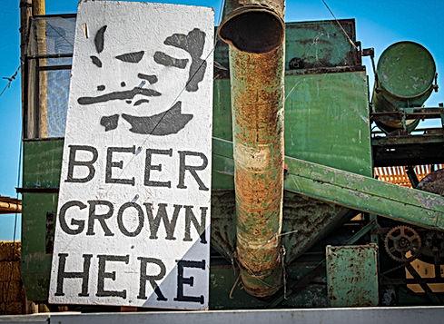 Beer grown here