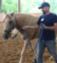 Horsemanship 101 - 1.jpg