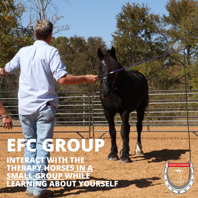 Equine Facilitated Counseling Group (Spring 2020)