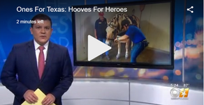 """Horses Help Veterans """"Be At Peace"""" With Civilian Transition"""
