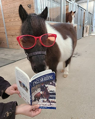 Ranger Reading.jpg