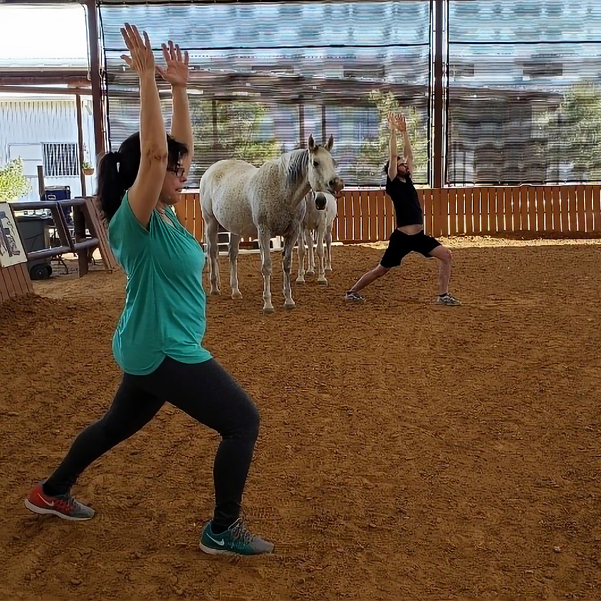 Yoga With Horses