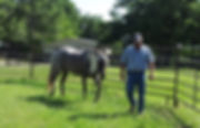 Equine Facilitated Counseling photo of B