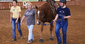 Best of 2019: Al Hill, Jr.'s Legacy - More Therapeutic Riding at Texas Horse Park