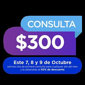 consulta_300_día_de_la_visión_Mesa_de_