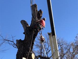 7800lb pick, crane removal over house