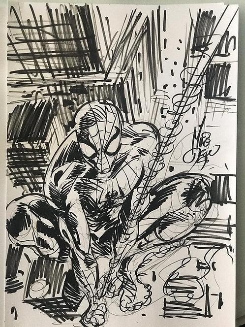Spider-Man (sketch warm up)