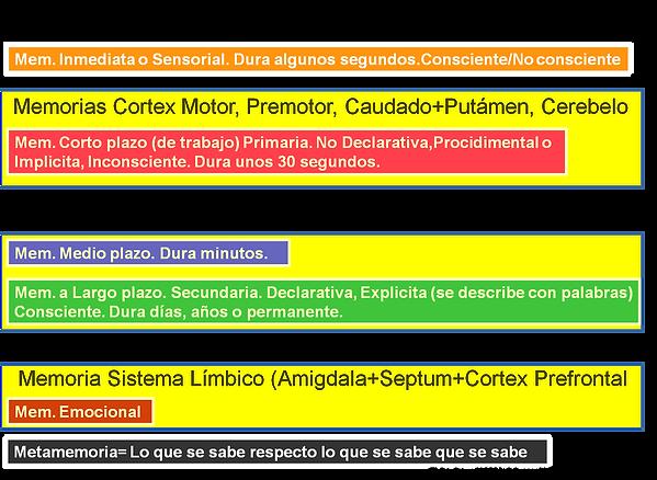 2-Memoria.png