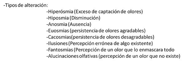 3-Olfatometria en general.jpg