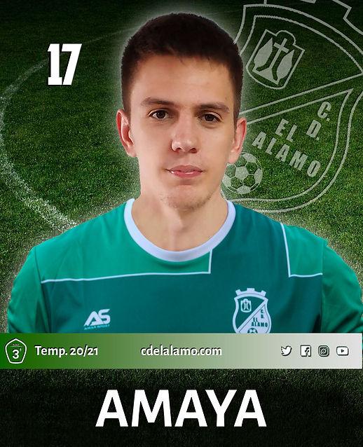 Jorge Amaya Domínguez