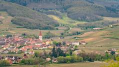 2021-04-28 Sigolsheim - Galtz-18