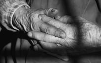 Vielles mains paysanne