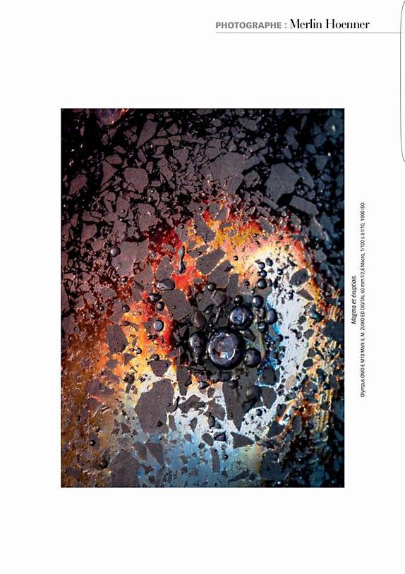 Macrophotographie 12.jpg