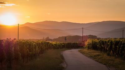 Golden hour 1 Colmar-4.jpg