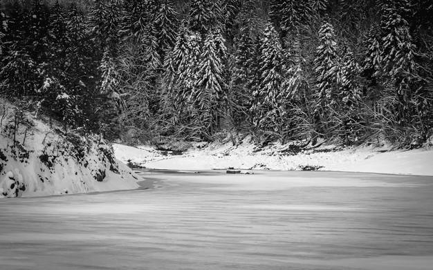 2021-01-19 Lacs de Sewen et d'Alfelfd nb