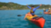 Go Sea Kayak dolphin tour Byron Bay