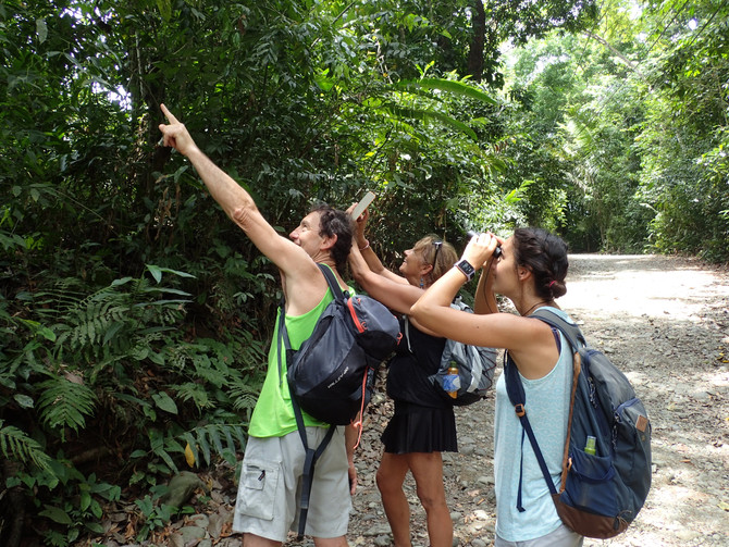 Nos 5 sens en éveil au Costa Rica