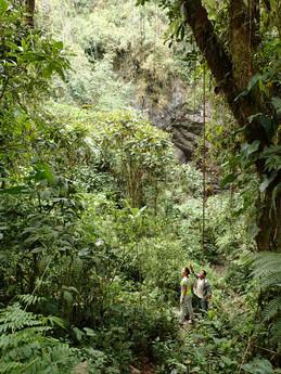 Entrée de la grotte aux Guacharos