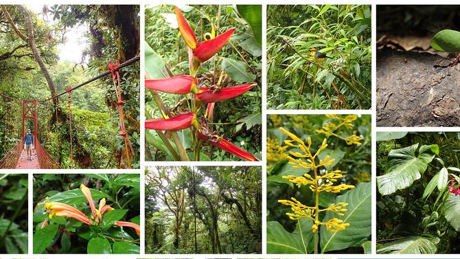 Le Costa Rica en images