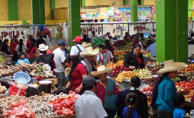 Immersion dans la vie locale péruvienne
