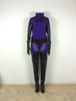 Kenneth Doyle Catwoman Costume