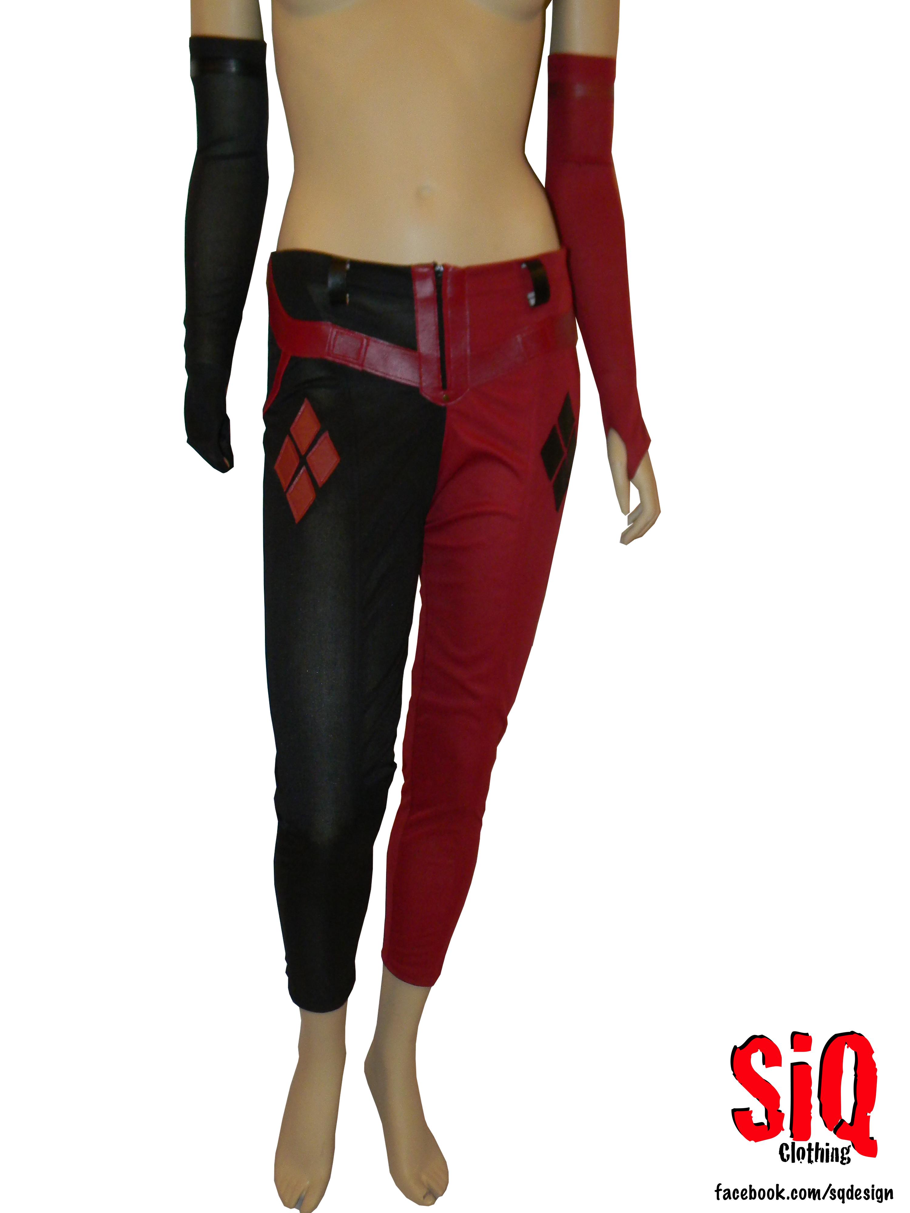 Arkham City Harley Quinn Costume