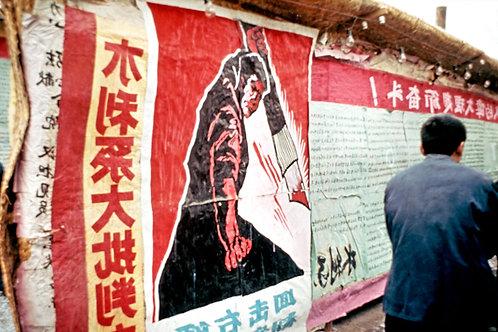 LA REVOLUTION CULTURELLE EN CHINE 013
