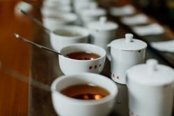 Tasting Cups