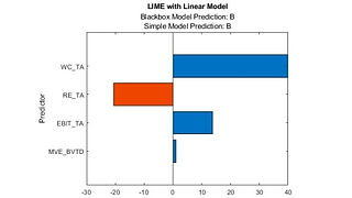 Model Interpretability.jpg