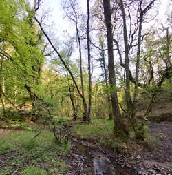 Mid Devon, Walks around North Lake Chapel