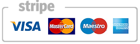 stripe payments image.png