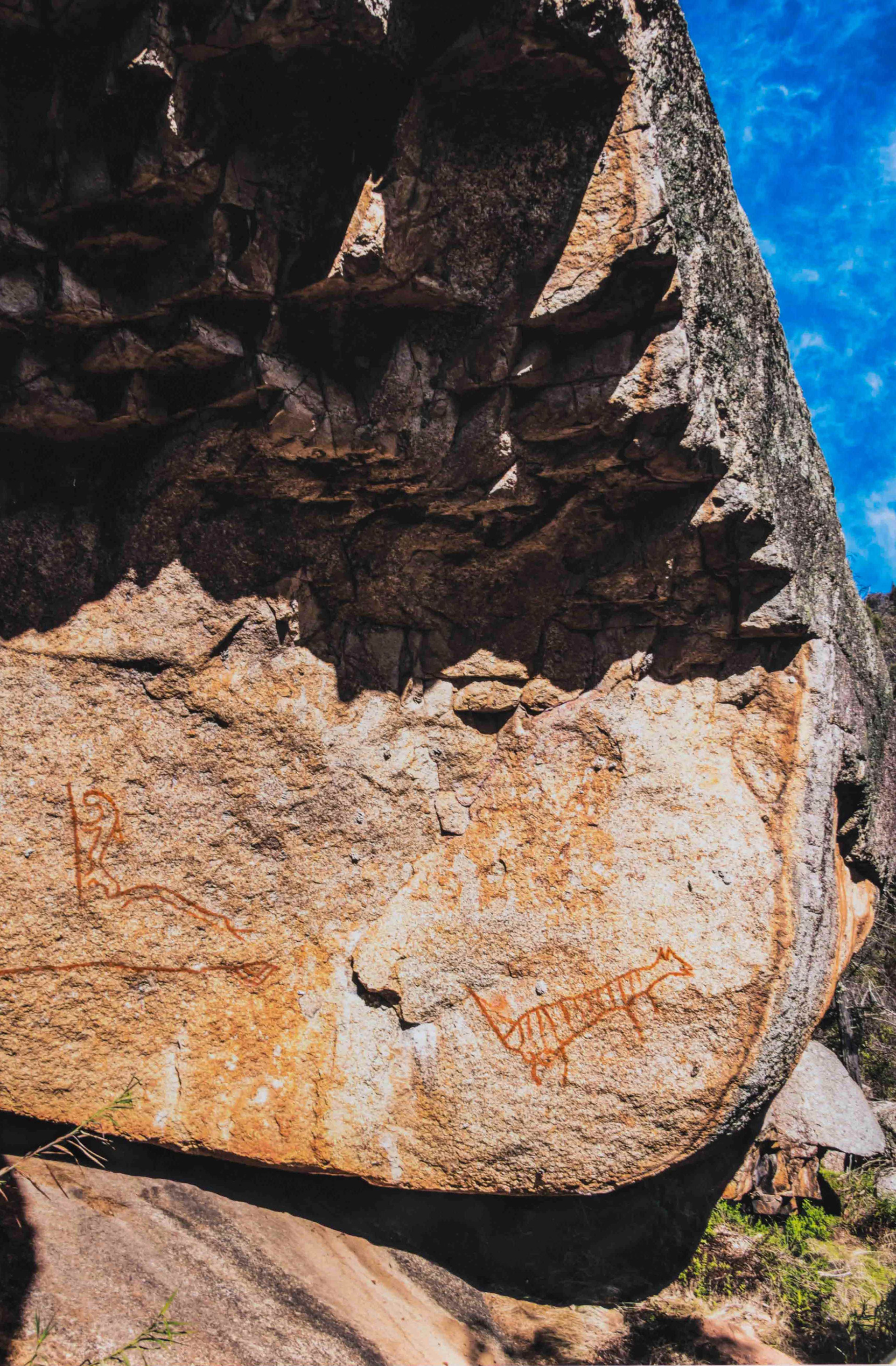Yeddonba Thylacine Rock Art