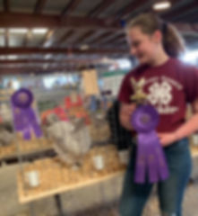 madison Grand Champion Best of Show.jpg