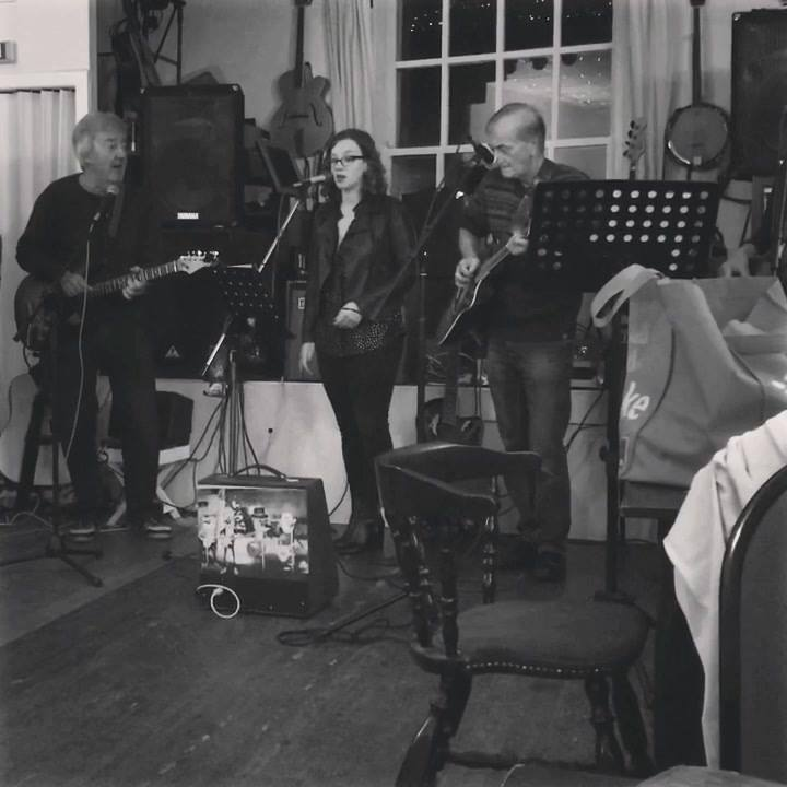 Jolene- Dolly Parton- Jamming with Over the Hill at the Colcombe Castle