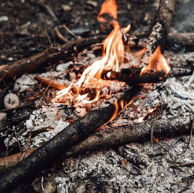 FeuerSnack WildCreative