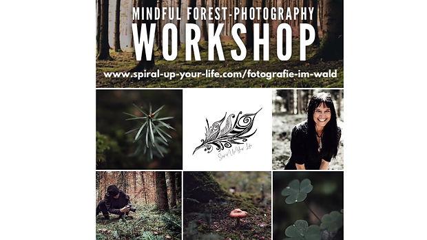 Mindful Forest-Photography Workshop Winterthur