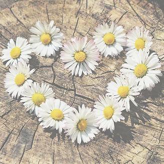 Let's bloom together.jpg