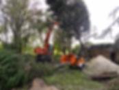 Rooien en versnipperen van bomen, Tuintec