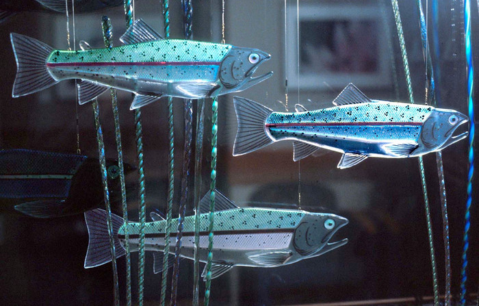 Fused Glass Rainbow Trout